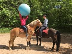 Wenn Pferde vertrauen, können Pferd und Reiter Spaß haben.