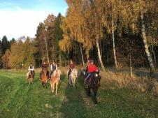 Auf sicheren Pferden dürfen auch schon die Jüngsten mit ins Gelände.