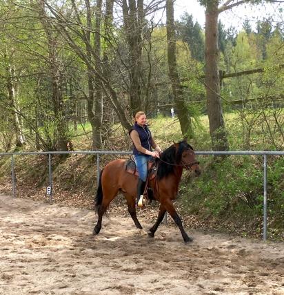 UnserePferde_01
